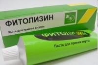 Фитолизин паста д/сусп для приема внутрь 100г №1